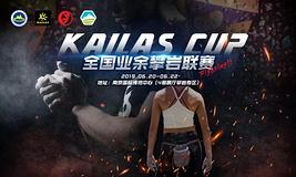 亚太户外展热血之选 | 2019 KAILAS CUP全国业余攀岩联赛等你来战!