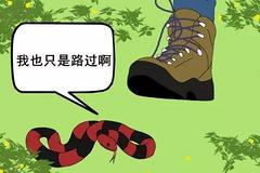 户外防蛇指南